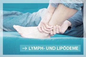 Das Lymphnetz